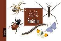 Smådjur, Lilla Naturserien