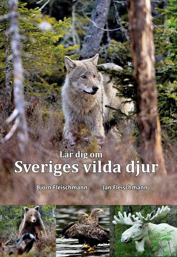 Lär dig om Sveriges vilda djur
