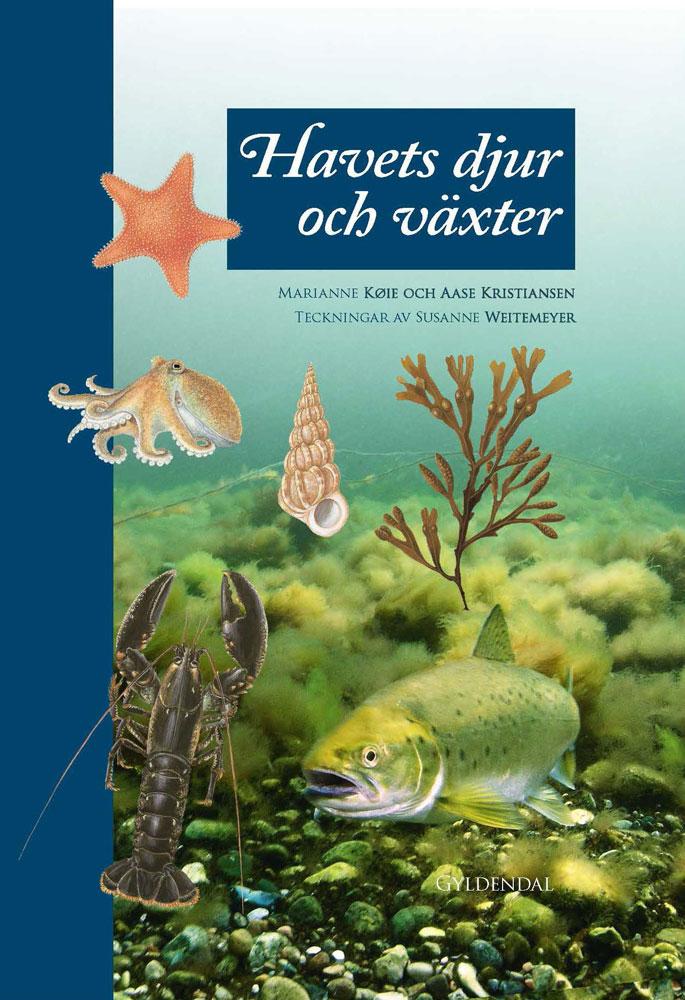 Havets djur och växter