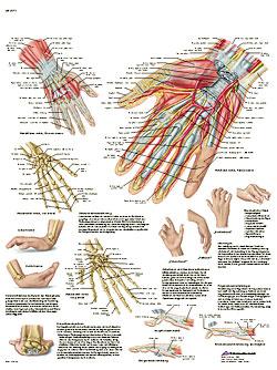 Plansch Hand laminerad