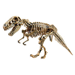 Dig It! Tyrannosaurus Rex