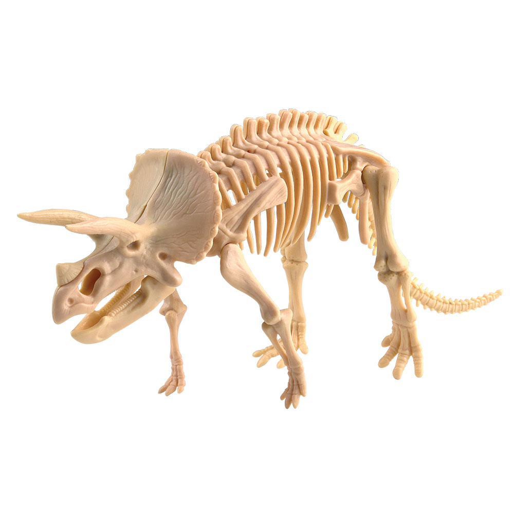 Dig it! Triceratops
