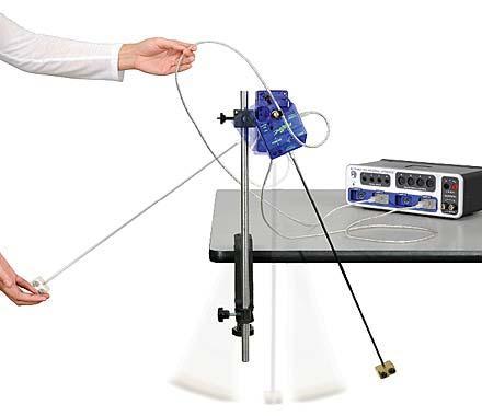 Centripetal Force on a Pendulum